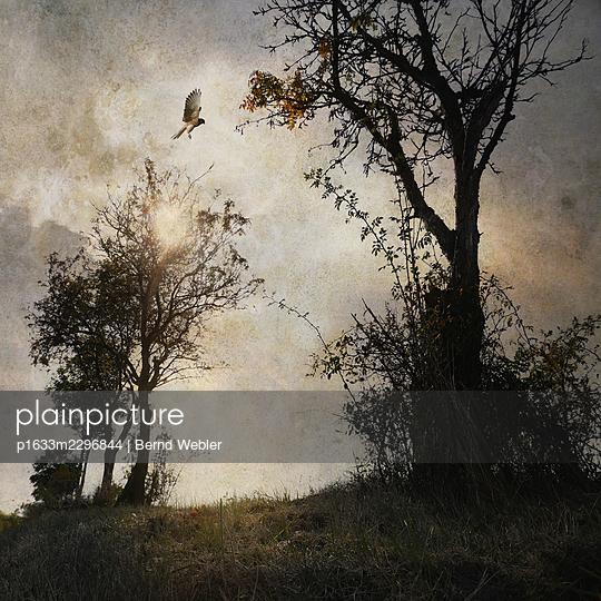 The End of Summer - Part III - p1633m2296844 by Bernd Webler