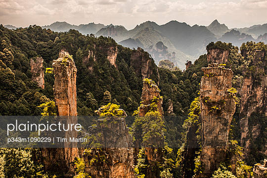 Karst pillars in Wulingyuan, China - p343m1090229 by Tim Martin