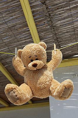Teddy drying - p0452881 by Jasmin Sander