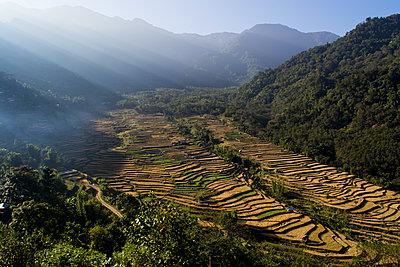 Nagaland - p1369m1222385 von Chris Hooton