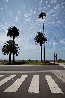 Zebra crossing - p591m1110858 by Celine Marchbank