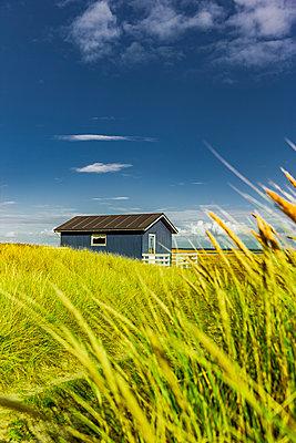 Blaues Haus  in Dünenlandschaft - p248m2147904 von BY