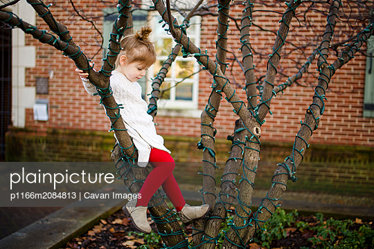 A cute little girl sits in a tree and gazes down - p1166m2084813 by Cavan Images