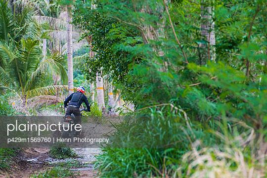 p429m1569760 von Henn Photography