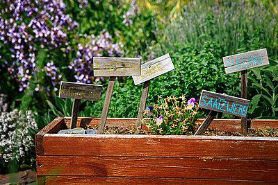 Im Garten - p1319m1525345 von Christian A. Werner