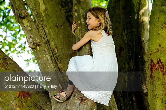 Mädchen klettert auf einen dicken Baum - p1212m1145920 von harry + lidy