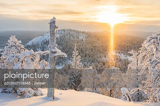 Winter landscape - p312m2119348 by Johner