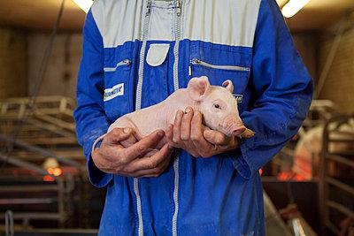 Tierhaltung - p1058m817153 von Fanny Legros