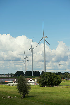 Wind turbines and farm - p1132m1486807 by Mischa Keijser