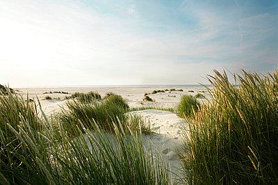 Holländische Küste - p5670702 von ofoulon