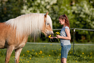 Junges Mädchen mit ihrem Pferd - p533m2015604 von Böhm Monika