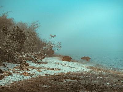 Seascape - p1166m2137125 by Cavan Images