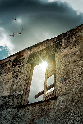 Vögel über einem verlassenen Haus - p1248m1451986 von miguel sobreira