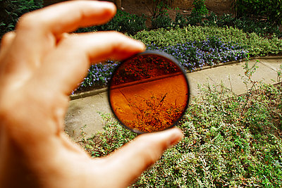 Looking through toned lens - p1189m1222222 by Adnan Arnaout
