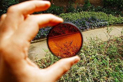 Blick durch eine getönte Linse - p1189m1222222 von Adnan Arnaout