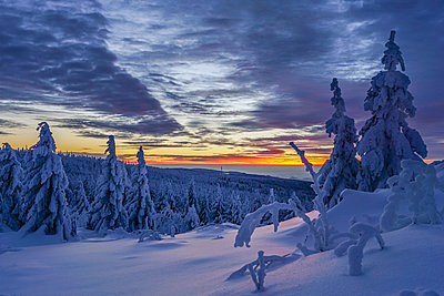 Germany, Lower Saxony, Harz National Park, winter landscape at sunset - p300m1449649 by Patrice von Collani