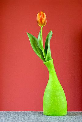 Knalliges Blumenstillleben - p3050128 von Dirk Morla