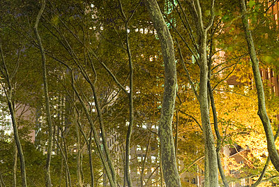 Bryant Park at Night, New York City - p5690026 by Jeff Spielman