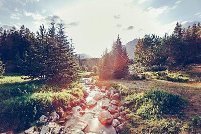 Vermillion Lakes, Banff, Alberta - p642m1137853 von brophoto