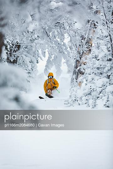 p1166m2084680 von Cavan Images