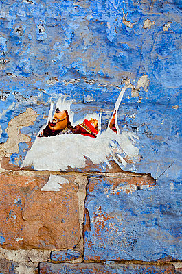 Torn Poster on Blue Wall - p1072m941400 by chinch gryniewicz