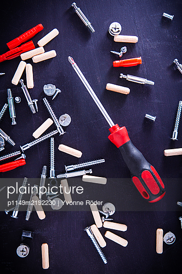 Screws and wall plugs - p1149m2192230 by Yvonne Röder