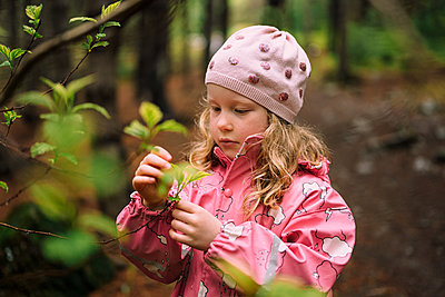 Girl examining leaves on branch in forest - p1166m2130834 by Cavan Images
