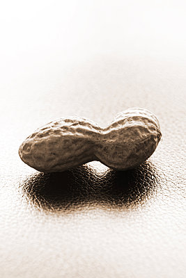 Peanut - p450m1128461 by Hanka Steidle
