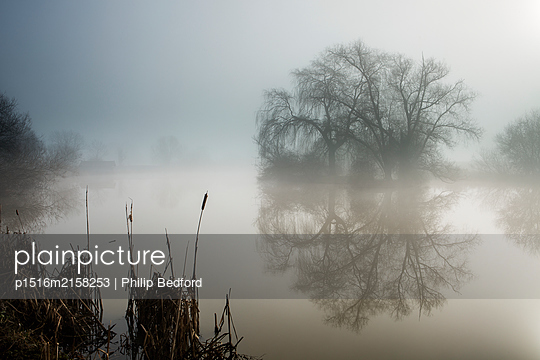 Arun river in the morning fog, England - p1516m2158253 by Philip Bedford