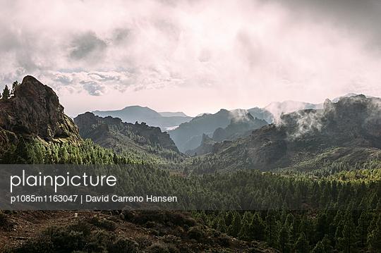 Viewpoint in Las Palmas - p1085m1163047 by David Carreno Hansen