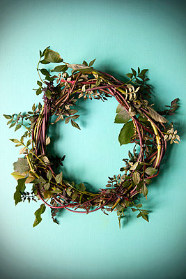 Wreath of Thorny Branches and Leaves - p1248m2200415 by miguel sobreira