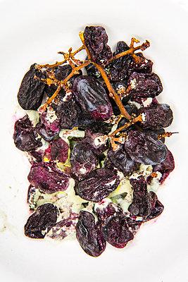 Verschimmelte Weintrauben I - p1057m916047 von Stephen Shepherd