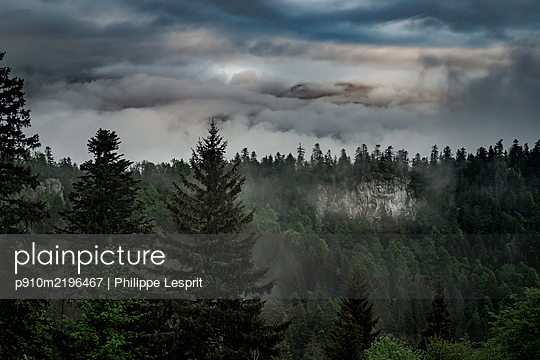 Thunderclouds over deciduous forest, France - p910m2196467 by Philippe Lesprit