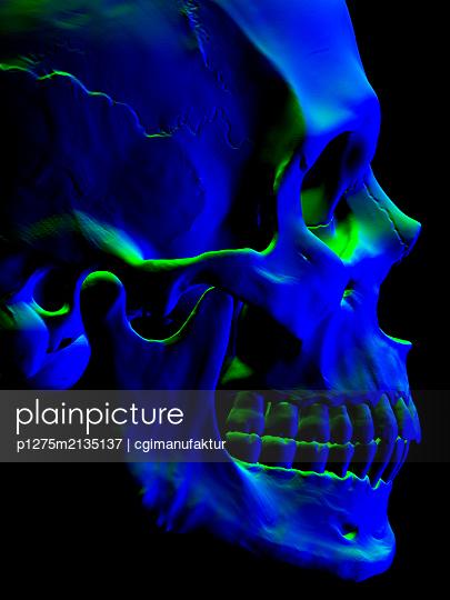 Skull - p1275m2135137 by cgimanufaktur