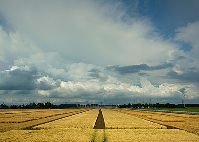 Thunderstorms travelling over Rilland, Zeeland, Netherlands - p429m2023157 by Mischa Keijser