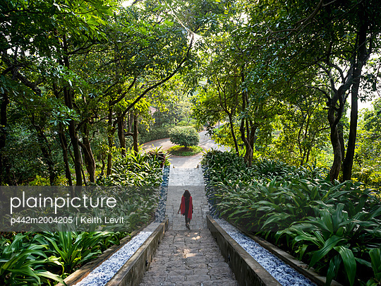 A woman walks down stairs surrounded by lush foliage, Ananda Hotel and Spa; Uttarakhand, India - p442m2004205 by Keith Levit