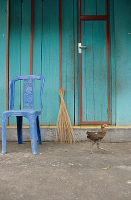 Plastic chair - p0451723 by Jasmin Sander