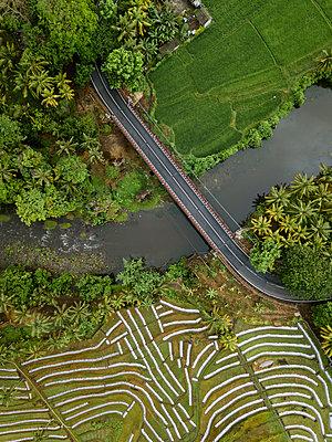 Autobrücke und Felder, Luftaufnahme - p1108m2141990 von trubavin