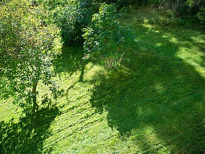Newly mowed lawn - p1418m1572342 by Jan Håkan Dahlström