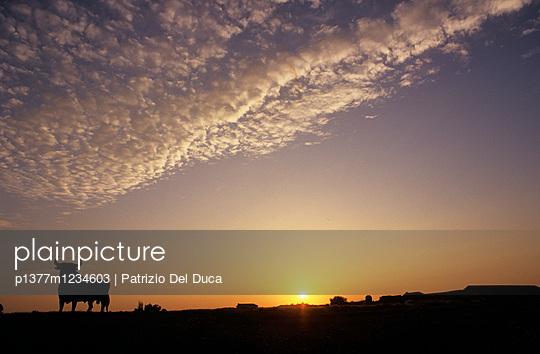 p1377m1234603 von Patrizio Del Duca