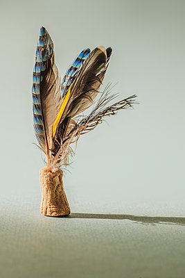 Feathers in a cork - p1228m2125005 by Benjamin Harte
