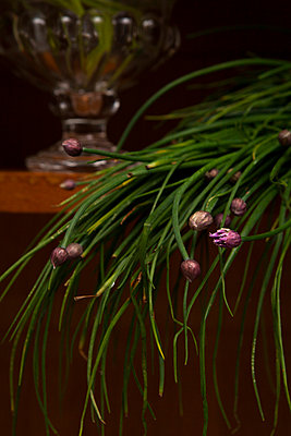 Chives - p1371m1573796 by virginie perocheau