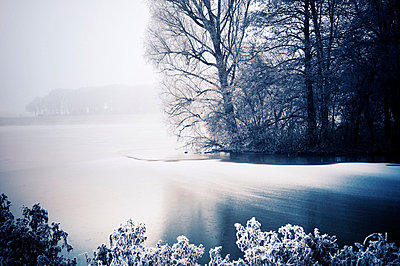 Winter wonderland at the Werdersee lake, Bremen - p416m784659 by Thomas Schaefer
