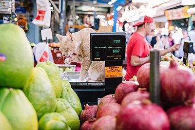 Carmel Markt Tel Aviv - p1600m2215341 von Ole Spata