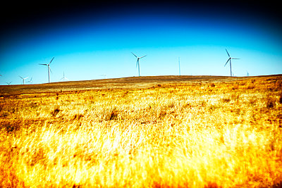 Golden Meadow with Wind Turbines on Horizon - p694m2218854 by Justin Hill photography