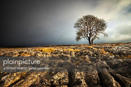 p1072m1163412 von Peter Paterson