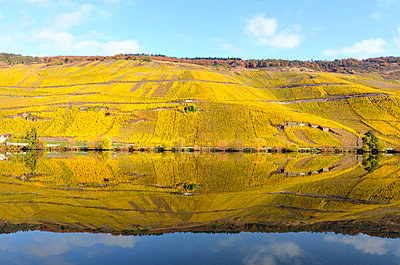 Moselle region in Germany - p8850196 by Oliver Brenneisen