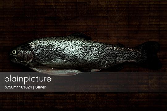 Forelle - p750m1161624 von Silveri