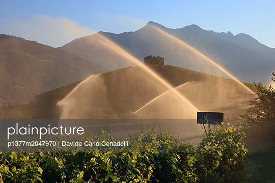 p1377m2047970 von Davide Carlo Cenadelli