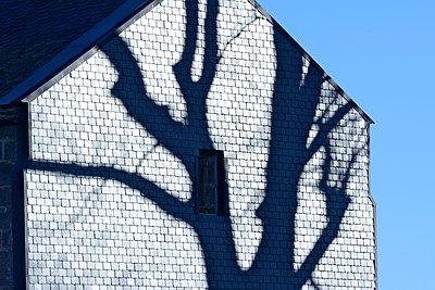 Slate facade - p813m891699 by B.Jaubert
